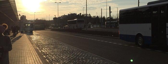 Bus 119 | Nádraží Veleslavín – Letiště Václava Havla is one of Prague.