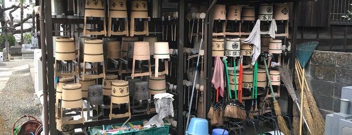 蓮光寺 is one of Japan.