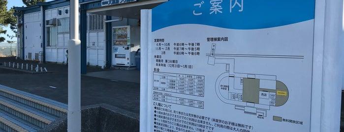 大黒海づり施設 is one of Tempat yang Disukai Masahiro.