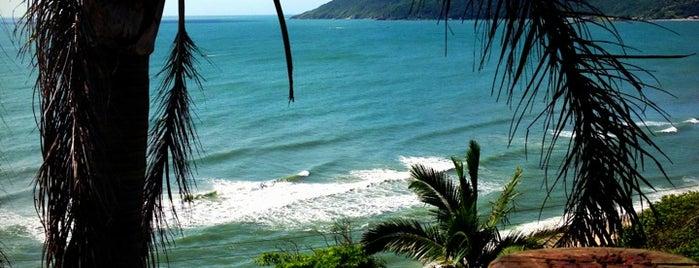 Praia da Armação is one of Ana Finoti : понравившиеся места.