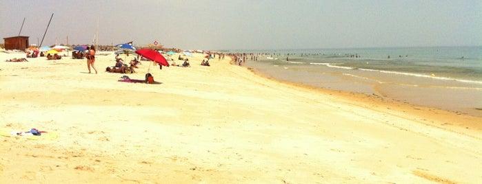 Praia da Terra Estreita is one of Lugares a visitar.