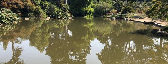 Waterfowl Pond is one of Conor'un Beğendiği Mekanlar.