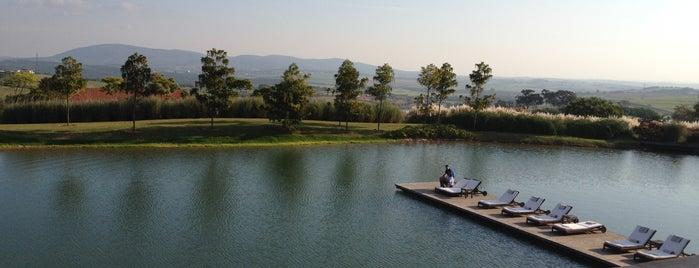 Fazenda Boa Vista is one of สถานที่ที่ Aline ถูกใจ.