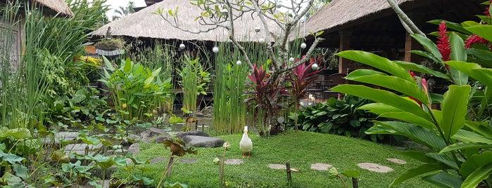 Il Giardino is one of Micheenli Guide: Bali food trail.