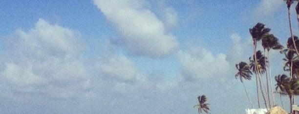 Punta Cana is one of Yulia 🐾 : понравившиеся места.