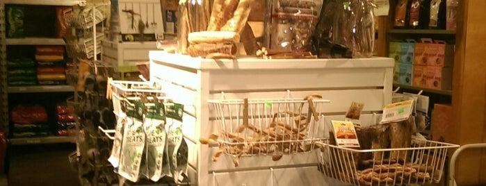 Green Pet Supply is one of Locais salvos de Chelsi.