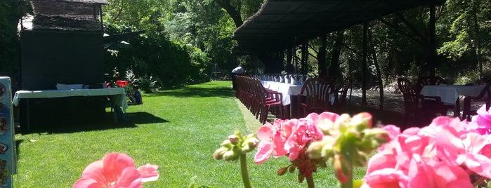 Restaurante La Fabriquilla is one of Tempat yang Disukai Михаил.