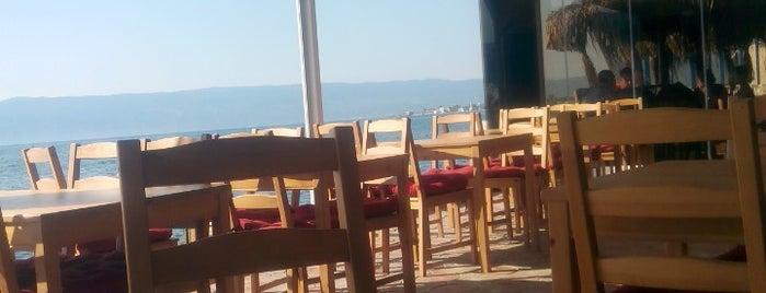 Tropical Cafe&Restaurant is one of สถานที่ที่ Ada ถูกใจ.