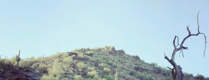 South Mountain Park is one of Great City Parks in the United States and Canada.