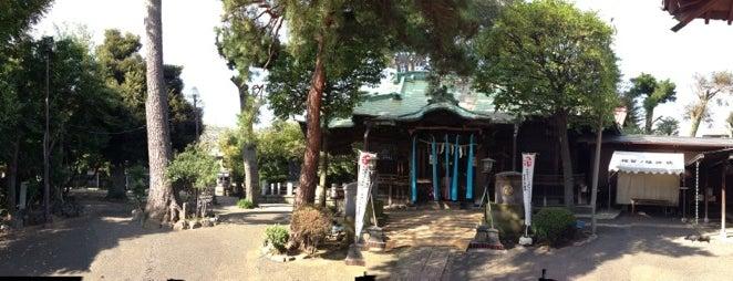 駒留八幡神社 is one of せたがや百景 100 famous views of Setagaya.