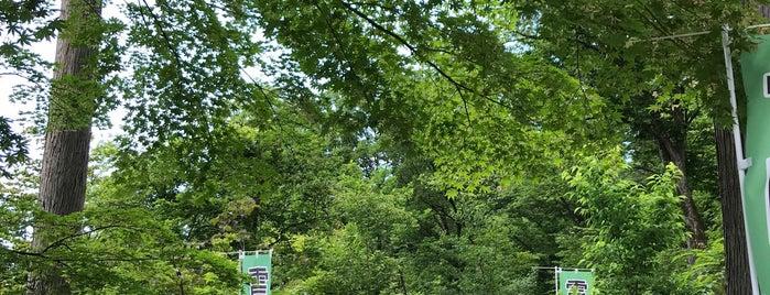雪国植物園 is one of Kazuo : понравившиеся места.