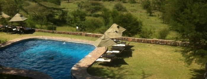 Serengeti Sopa Lodge is one of Free wi-fi venues.