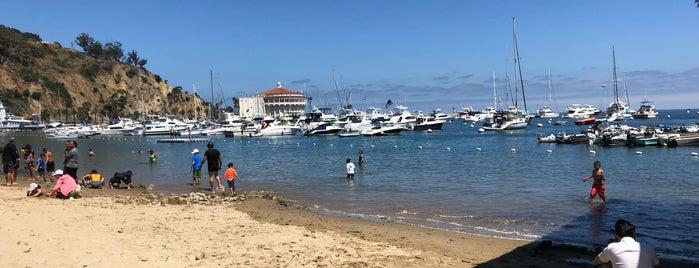Avalon Harbor is one of Ryan : понравившиеся места.