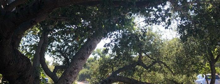 O'Neill Park Campground is one of Lugares favoritos de Ryan.
