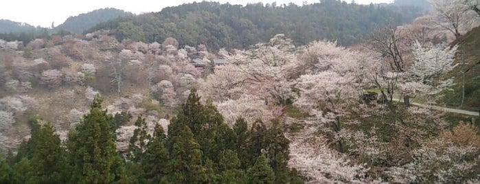 吉野山 is one of Japan?.