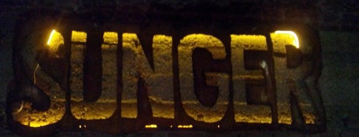 Sünger Pub is one of สถานที่ที่บันทึกไว้ของ 🆉🅴🆈🅽🅴🅻.