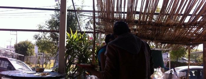 Desayunos Tropico is one of Must-visit Food in Puebla.