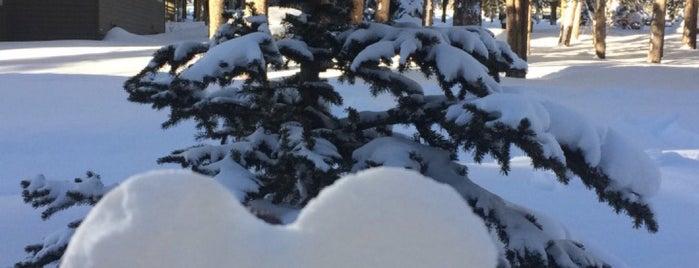 The Pines at Keystone is one of Maria 님이 좋아한 장소.