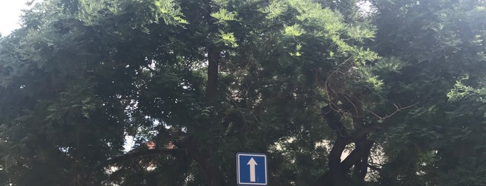 Park se třemi stromy is one of Daniel : понравившиеся места.