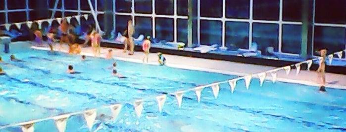 Městský plavecký bazén is one of Jizerky.