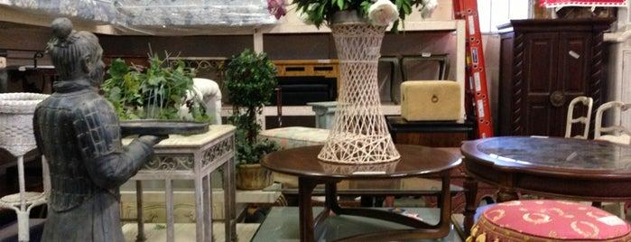 east coast furniture is one of Local Treasures.
