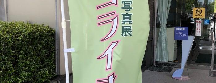 狭山市立博物館 is one of papecco2017'un Beğendiği Mekanlar.