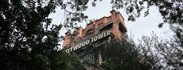 The Twilight Zone Tower of Terror is one of Lieux qui ont plu à Matt.