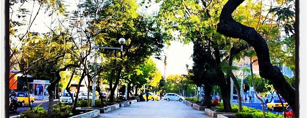Paseo Chapultepec is one of Locais curtidos por Marteeno.