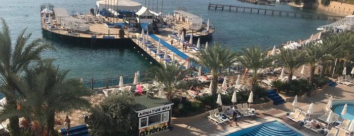Orange Count Resort Hotel Alanya is one of Raster Elektronik : понравившиеся места.