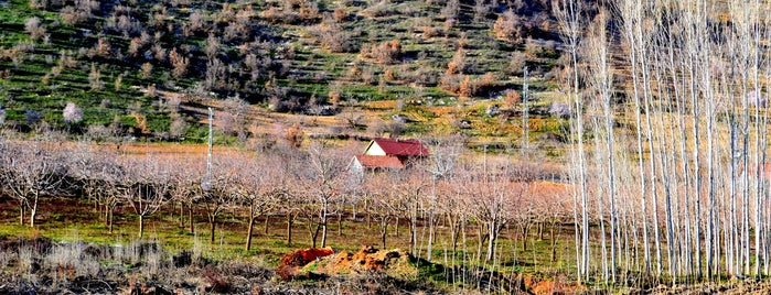 Çatalgoz is one of Enes : понравившиеся места.