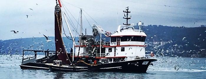 Limanda Balık is one of Zerrin'in Beğendiği Mekanlar.