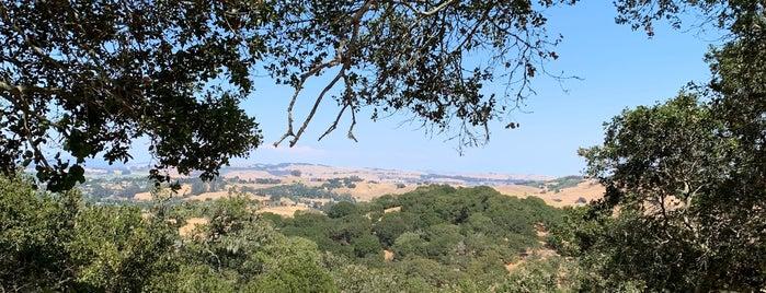 Helen Putnam Regional Park is one of Petaluma, CA.
