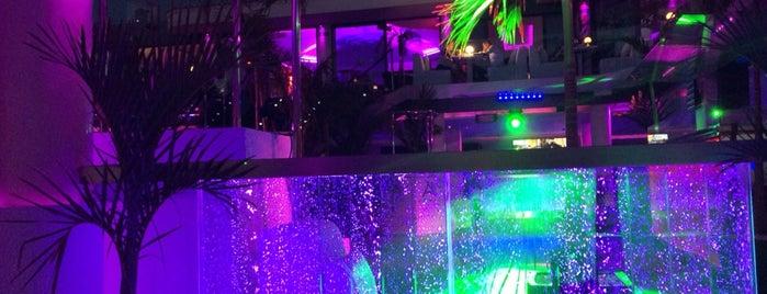 Papagayo Beach Club is one of Locais curtidos por Julia.