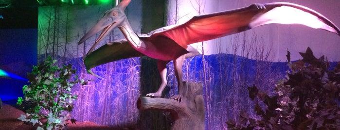 Шоу динозавров is one of Julia'nın Beğendiği Mekanlar.