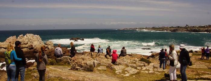 Hermanus is one of The Garden Route.