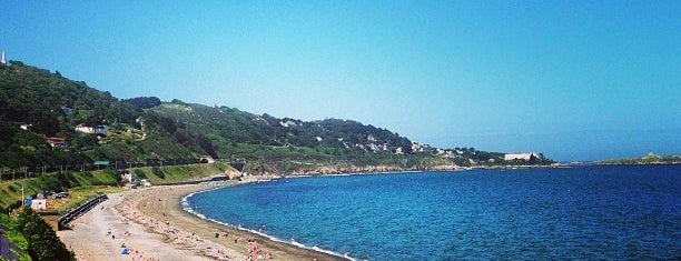Killiney Beach is one of Lugares favoritos de Lucy.