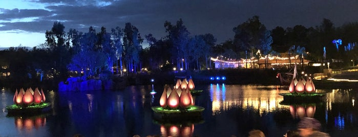Rivers of Light is one of Meiさんのお気に入りスポット.