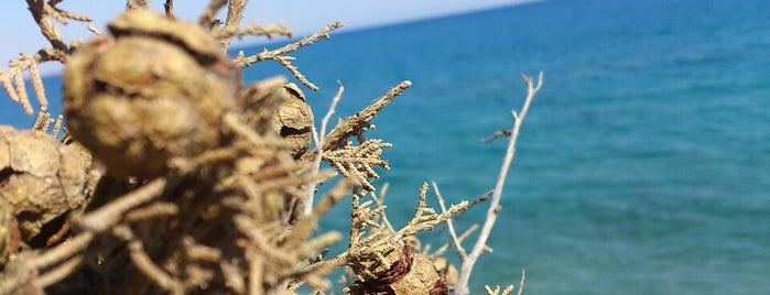 Küçük Çaltıcak is one of Antalya genel gezilir.