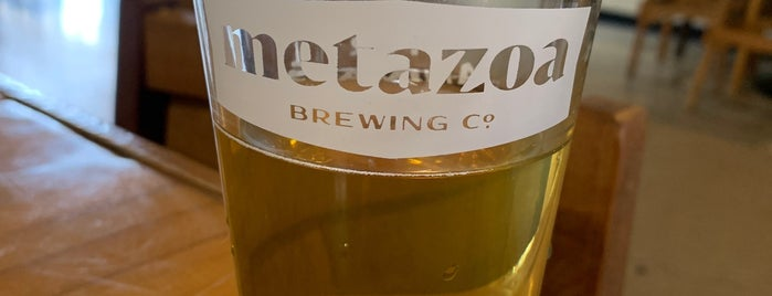 Metazoa Brewing Company is one of Breweries I've visited.