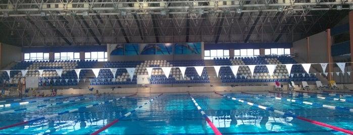Spor Merkezi TechnoGym is one of Orte, die Zeki gefallen.