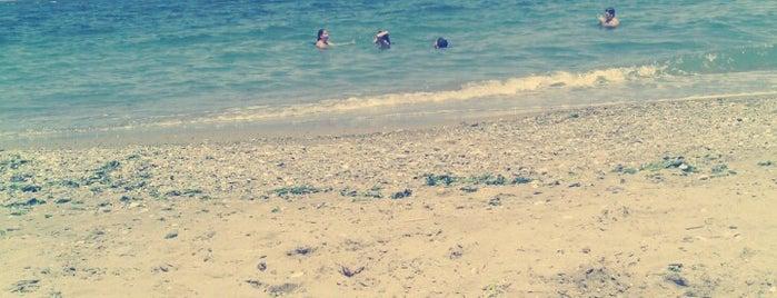 Altınkum Plajı is one of salih 님이 좋아한 장소.