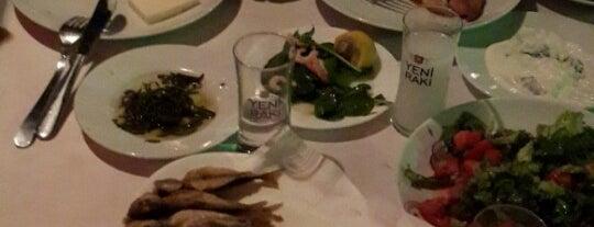 Tatlısu Sahil Restaurant is one of balıkesir.