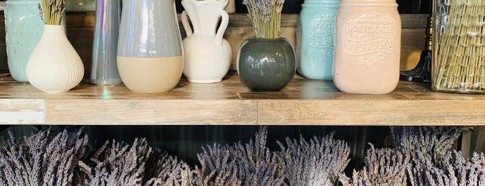 Lavender Home & Garden is one of สถานที่ที่ Deanna ถูกใจ.