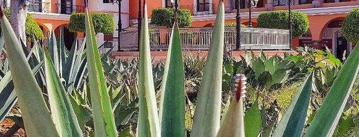 San Pablo Villa de Mitla is one of México trip.