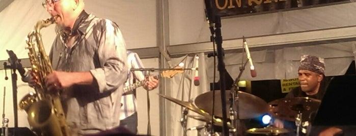 Niwot Jazz Festival is one of สถานที่ที่ Joseph ถูกใจ.