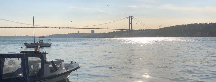 Deniz Yıldızı is one of Tempat yang Disukai Serpil.