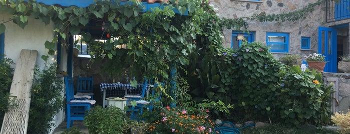 Alterna Köy Oteli is one of Tempat yang Disukai Serpil.