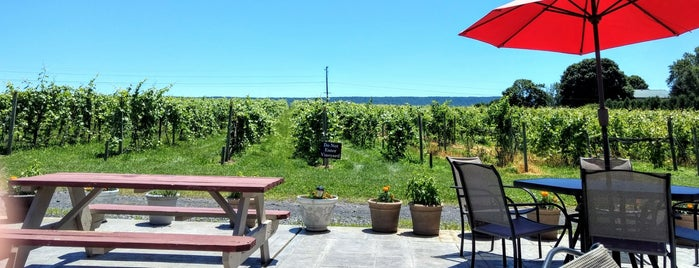 Happy Valley Vineyard & Winery is one of PA State College.