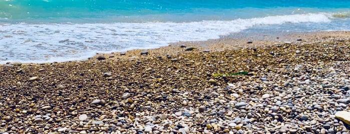 Playa El Torres is one of los imprescindibles.