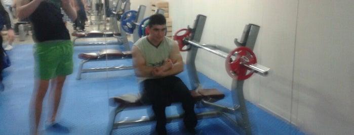 Salman Gym Fitness Center is one of Orte, die Yunus gefallen.